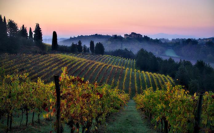5 Top Wine Tasting Destinations in Europe